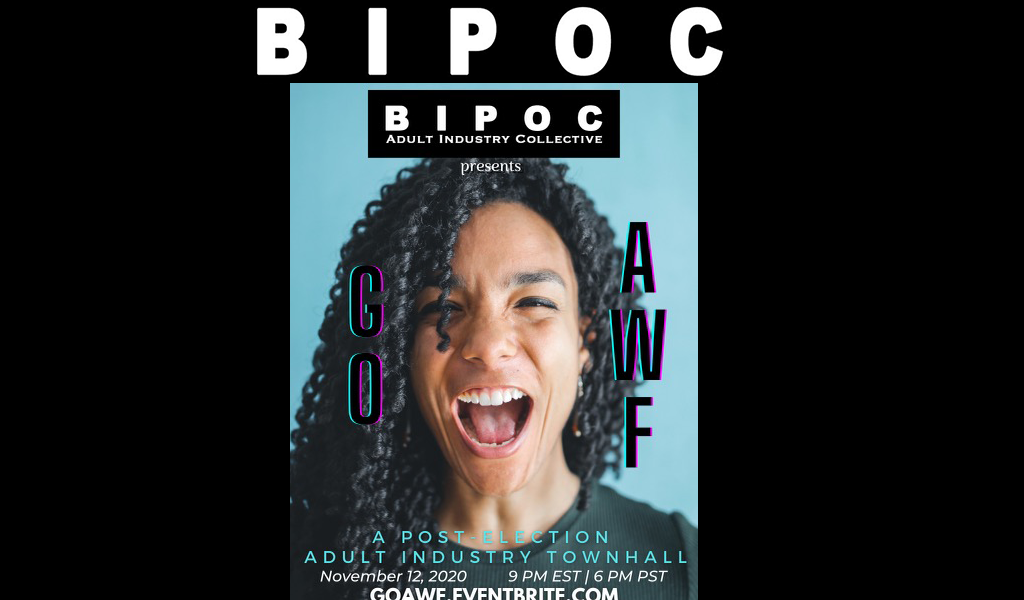 BIPOC-AIC & Blue Pearl Therapy Throw Post-Election Town Hall